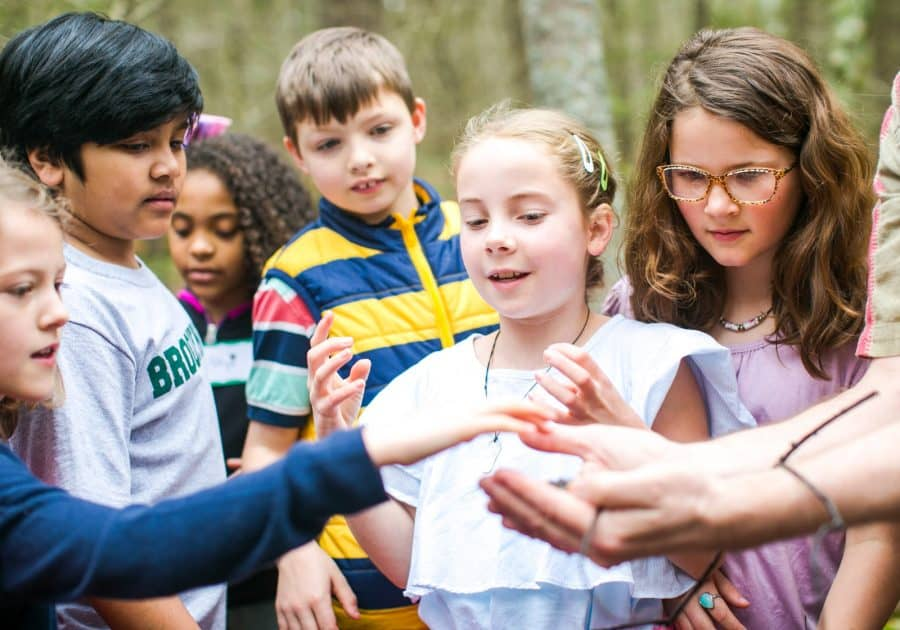 Group of students gather during outdoor learning
